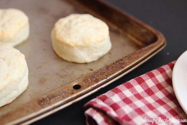 biscuit-1