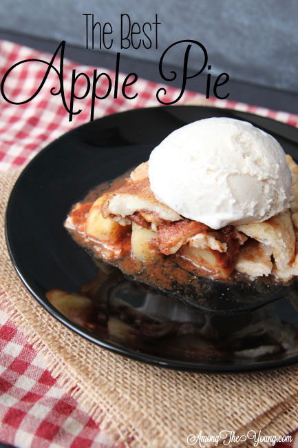 the very best apple pie recipe