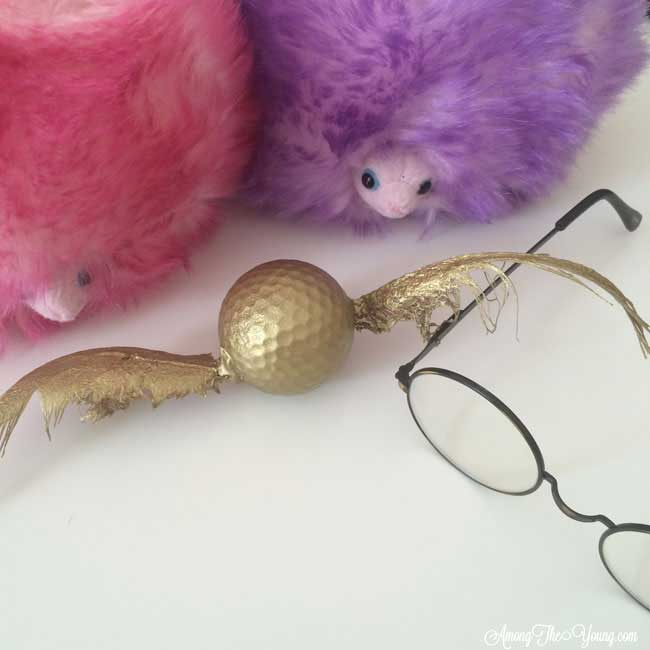 Harry Potter TRF party