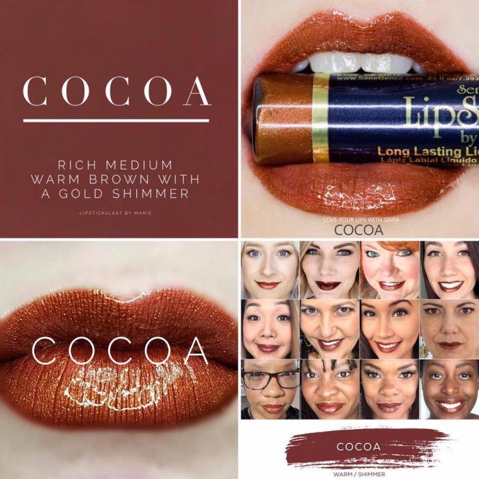 Lipsense Colors featured by top US lifestyle blog and Lipsense distributor, Kaylynn of Among the Young: image of Cocoa