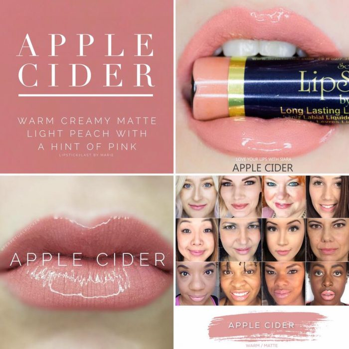 Lipsense Colors featured by top US lifestyle blog and Lipsense distributor, Kaylynn of Among the Young: image of Apple Cider