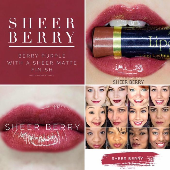 Lipsense Colors featured by top US lifestyle blog and Lipsense distributor, Kaylynn of Among the Young: image of Sheer Berry