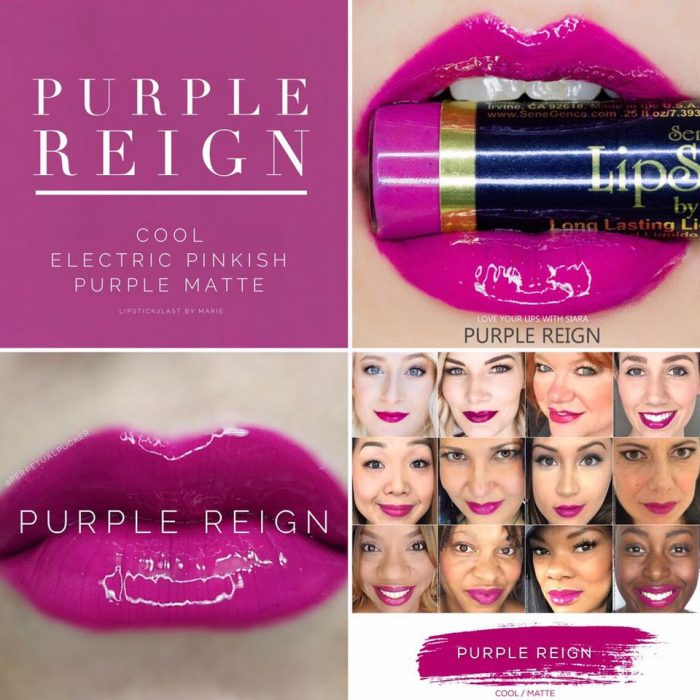 Lipsense Colors featured by top US lifestyle blog and Lipsense distributor, Kaylynn of Among the Young: image of Purple Reign