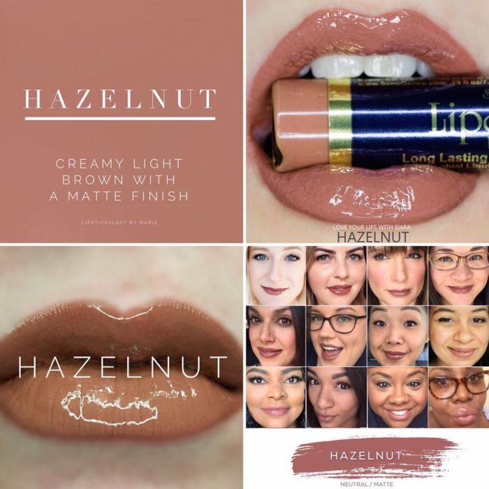 Lipsense Colors featured by top US lifestyle blog and Lipsense distributor, Kaylynn of Among the Young: image of Hazelnut