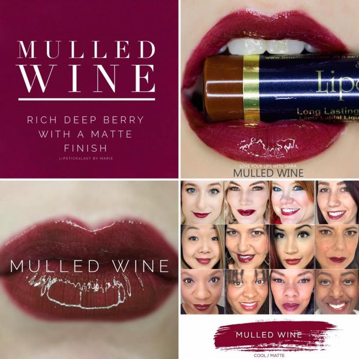 Lipsense Colors featured by top US lifestyle blog and Lipsense distributor, Kaylynn of Among the Young: image of Mulled Wine
