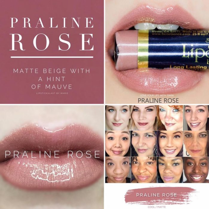 Lipsense Colors featured by top US lifestyle blog and Lipsense distributor, Kaylynn of Among the Young: image of Praline Rose
