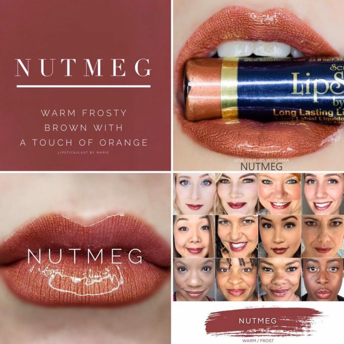 Lipsense Colors featured by top US lifestyle blog and Lipsense distributor, Kaylynn of Among the Young: image of Nutmeg