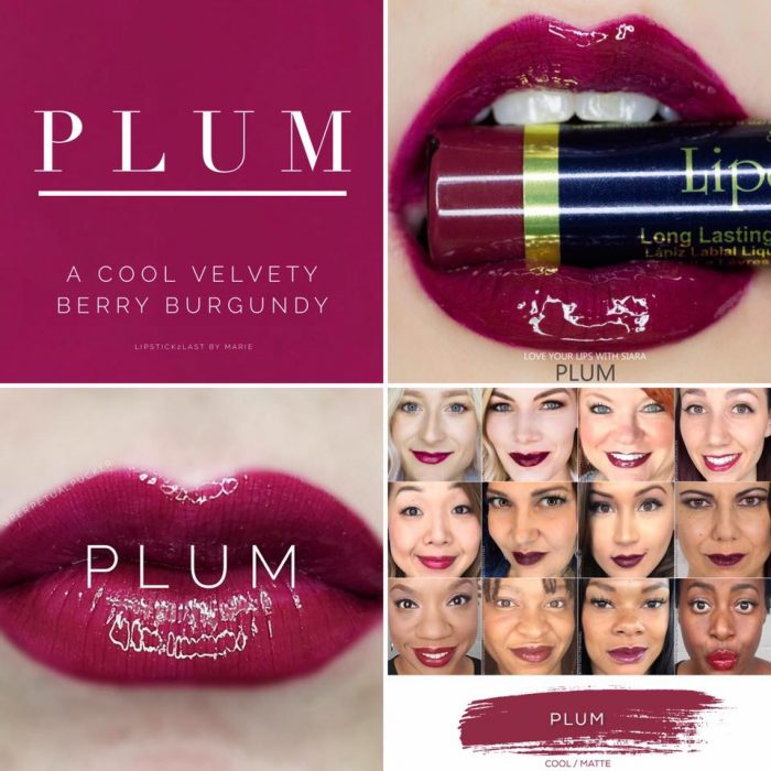 Lipsense Colors featured by top US lifestyle blog and Lipsense distributor, Kaylynn of Among the Young: image of Plum