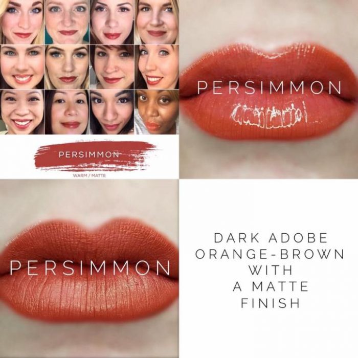 Lipsense Colors featured by top US lifestyle blog and Lipsense distributor, Kaylynn of Among the Young: image of Persimmon