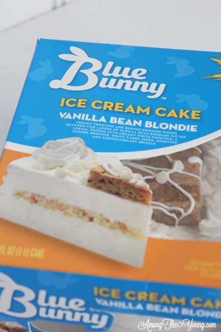 Blue Bunny Ice Cream Cake Recipe featured by top US food blog, Among the Young
