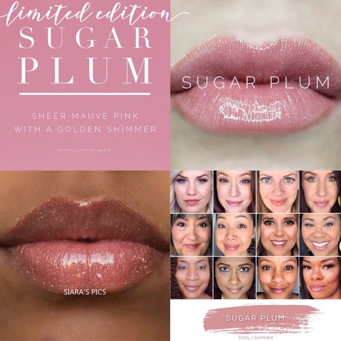 Lipsense Colors featured by top US lifestyle blog and Lipsense distributor, Kaylynn of Among the Young: image of Sugar Plum