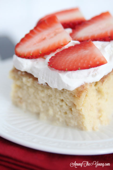 The most delicious tres leches cake featured by top Utah Foodie blog, Among the Young: image of tres leches close up | Easy Tres Leches Recipe by popular Utah lifestyle blog, Among the Young: Pinterest image of Tres Leches cake.