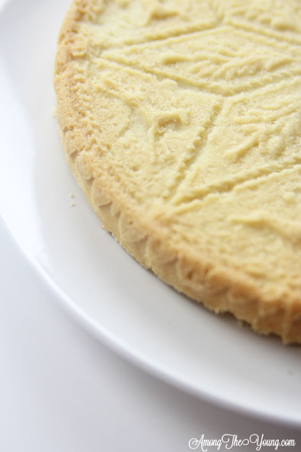 The Best Scottish Shortbread recipe featured by top Utah Foodie Among the Young: image of scottish shortbread recipe from the side | Traditional Scottish Shortbread Recipe for the Holidays by popular Utah food blog, Among the Young; image of Scottish shortbread.