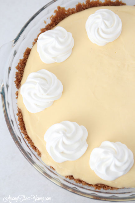 The Best Egg Nog Pie recipe featured by top Utah Foodie blog, Among the Young: image of Egg Nog Pie from above without Nutmeg | Egg Nog Pie by popular Utah lifestyle blog, Among the Young: image of a egg nog pie.