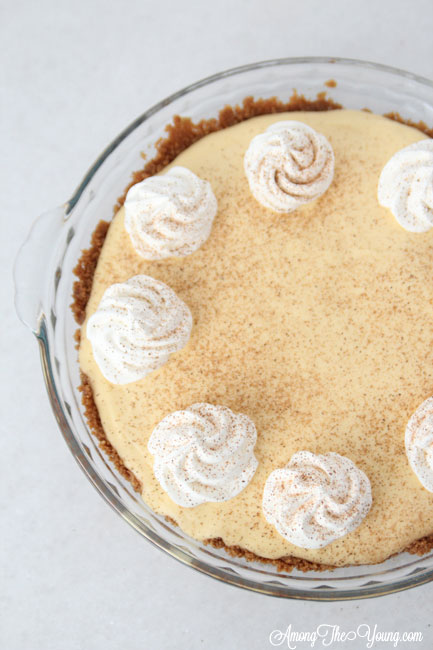 The Best Egg Nog Pie recipe featured by top Utah Foodie blog, Among the Young: image of Egg Nog Pie from above | Egg Nog Pie by popular Utah lifestyle blog, Among the Young: image of a egg nog pie.