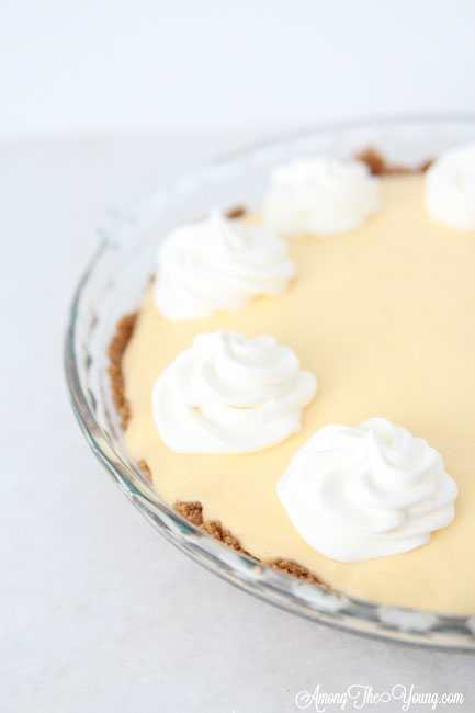 The Best Egg Nog Pie recipe featured by top Utah Foodie blog, Among the Young: image of Egg Nog Pie no spice | Egg Nog Pie by popular Utah lifestyle blog, Among the Young: image of a egg nog pie.