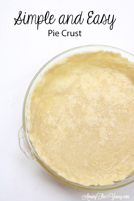 Simple and Easy Pie recipe by top Utah Foodie Among the Young: image of full pie crust PIN |Simple Pie Crust Recipe by popular Utah lifestyle blog, Among the Young: Pinterest image of a simple pie crust.