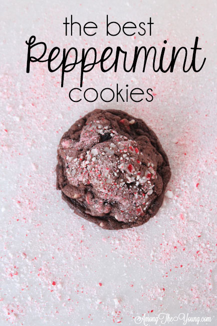 The dark chocolate peppermint cookies recipe featured by top Utah Foodie Among the Young: image of cookie in peppermint PIN |Chocolate Peppermint Cookies by popular Utah lifestyle blog, Among the Young: Pinterest image of chocolate peppermint cookies.