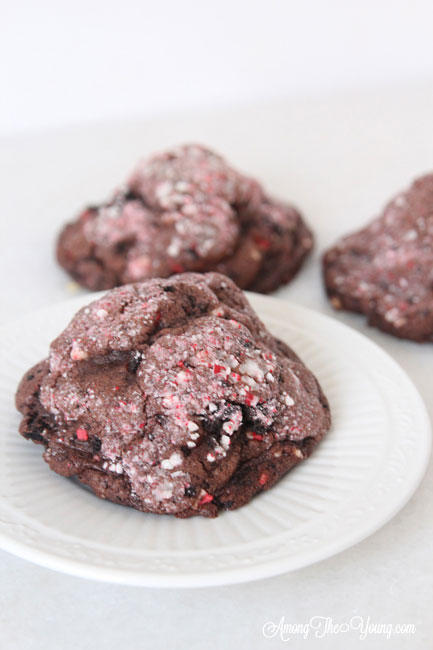 The dark chocolate peppermint cookies recipe featured by top Utah Foodie Among the Young: image of close up cookie |Chocolate Peppermint Cookies by popular Utah lifestyle blog, Among the Young: Pinterest image of chocolate peppermint cookies.