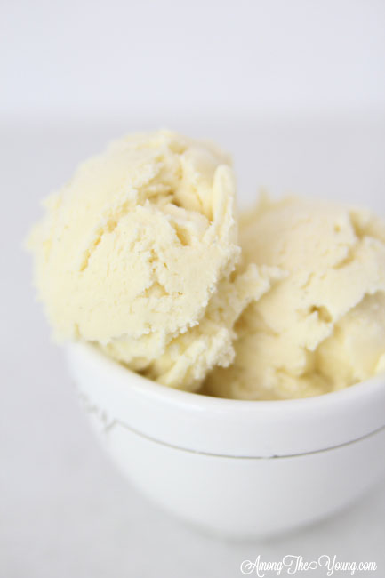 The Best vanilla bean ice cream featured by top Utah Foodie blog Among the Young: image of vanilla bean ice cream in a bowl close up