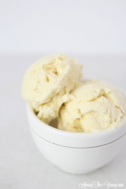 The Best vanilla bean ice cream featured by top Utah Foodie blog Among the Young: image of vanilla bean ice cream in a bowl